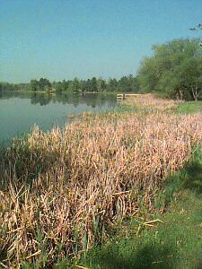 Montmorency County, Michigan