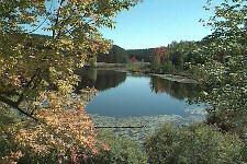 Osceola County, Michigan