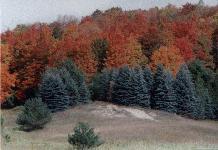 Otsego County, Michigan