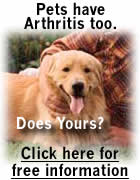 Help your pets who suffer from joint pain.